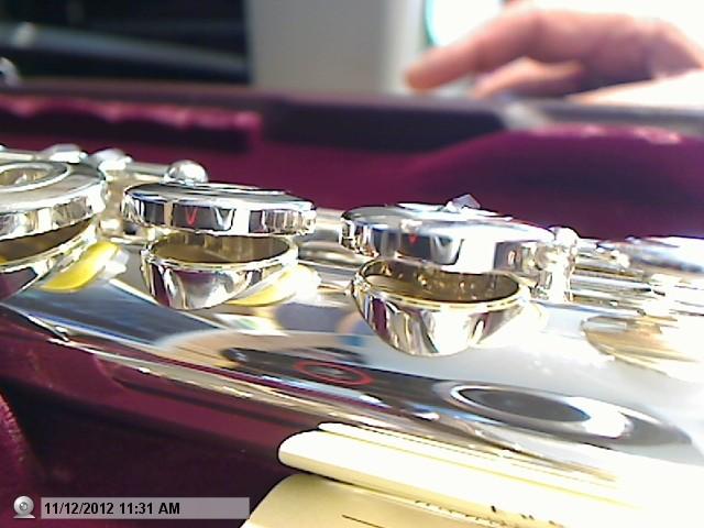 Amstelveen flute import export fluit